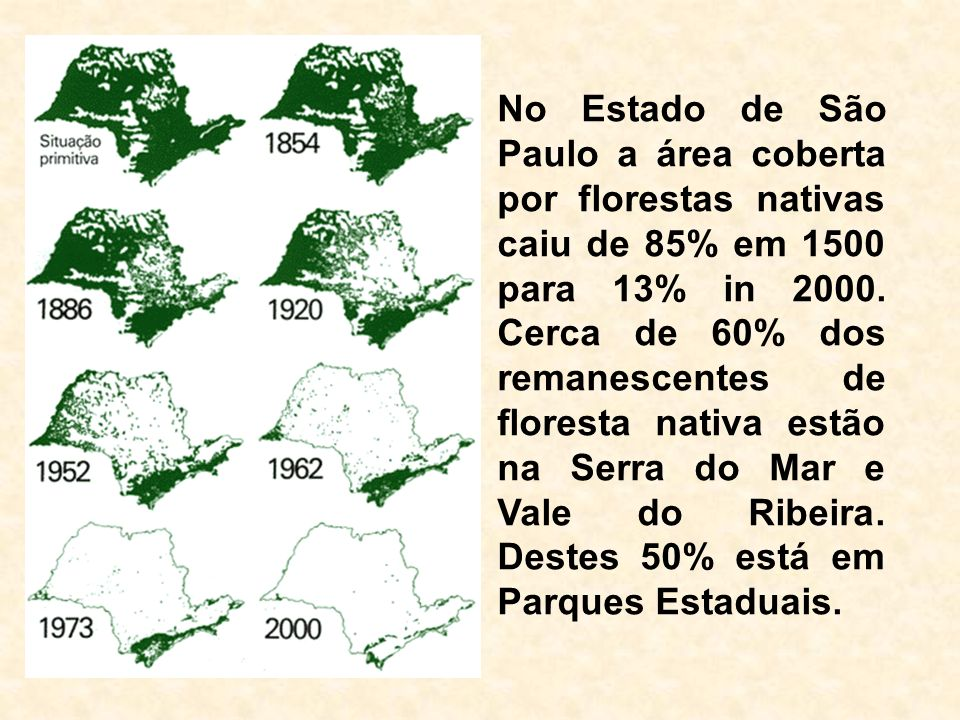 Fonte: Hilton Silveira Pinto, Eduardo Delgado Assad & Jurandir Zullo Junior CEPAGRI / UNICAMP CNPTIA / EMBRAPA CEPAGRI / UNICAMP CNPTIA / EMBRAPA Mudança Climática e Agricultura