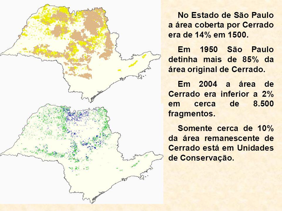 No Estado de São Paulo a área coberta por Cerrado era de 14% em 1500. Em 1950 São Paulo detinha mais de 85% da área original de Cerrado. Em 2004 a áre