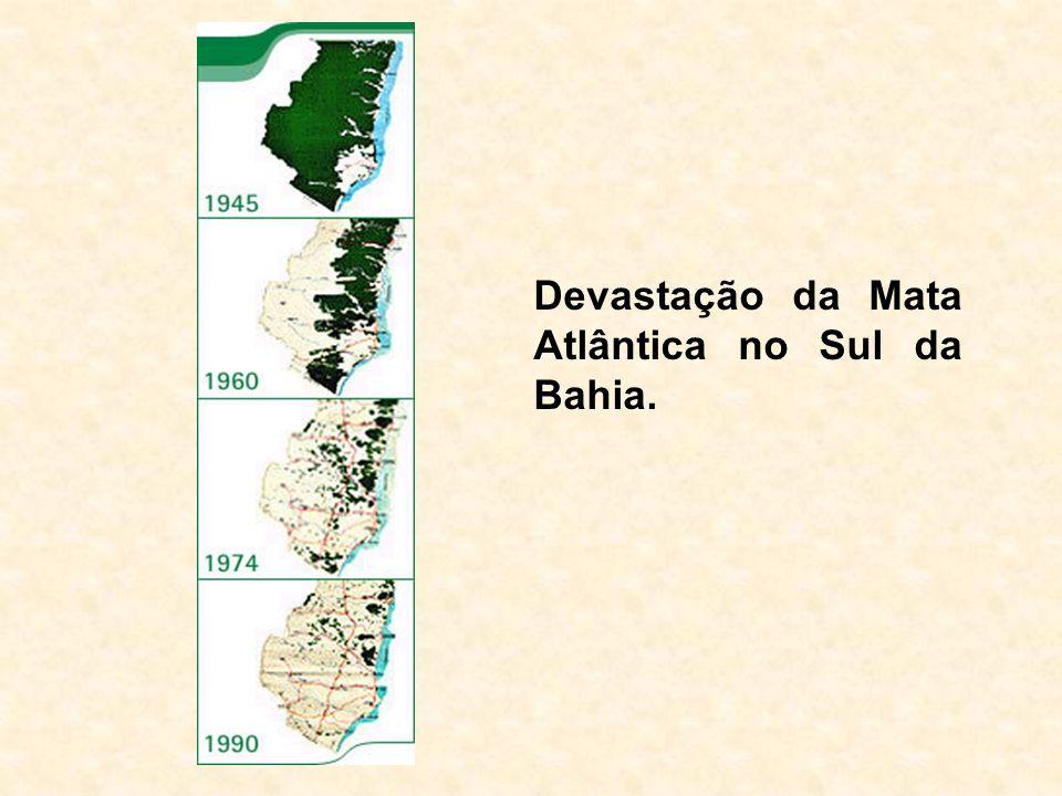 Geographic distribution of Calyptranthes grandifolia O.