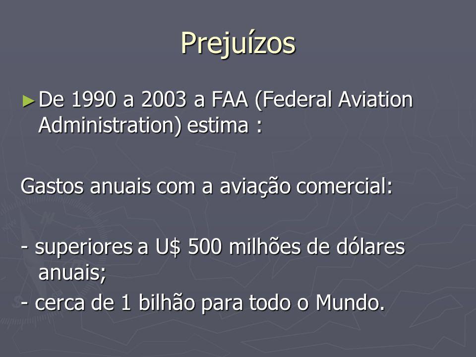 Prejuízos De 1990 a 2003 a FAA (Federal Aviation Administration) estima : De 1990 a 2003 a FAA (Federal Aviation Administration) estima : Gastos anuai
