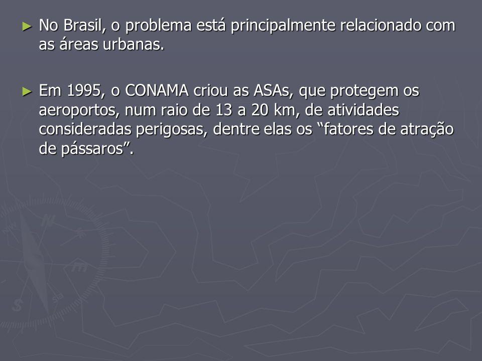 No Brasil, o problema está principalmente relacionado com as áreas urbanas. No Brasil, o problema está principalmente relacionado com as áreas urbanas