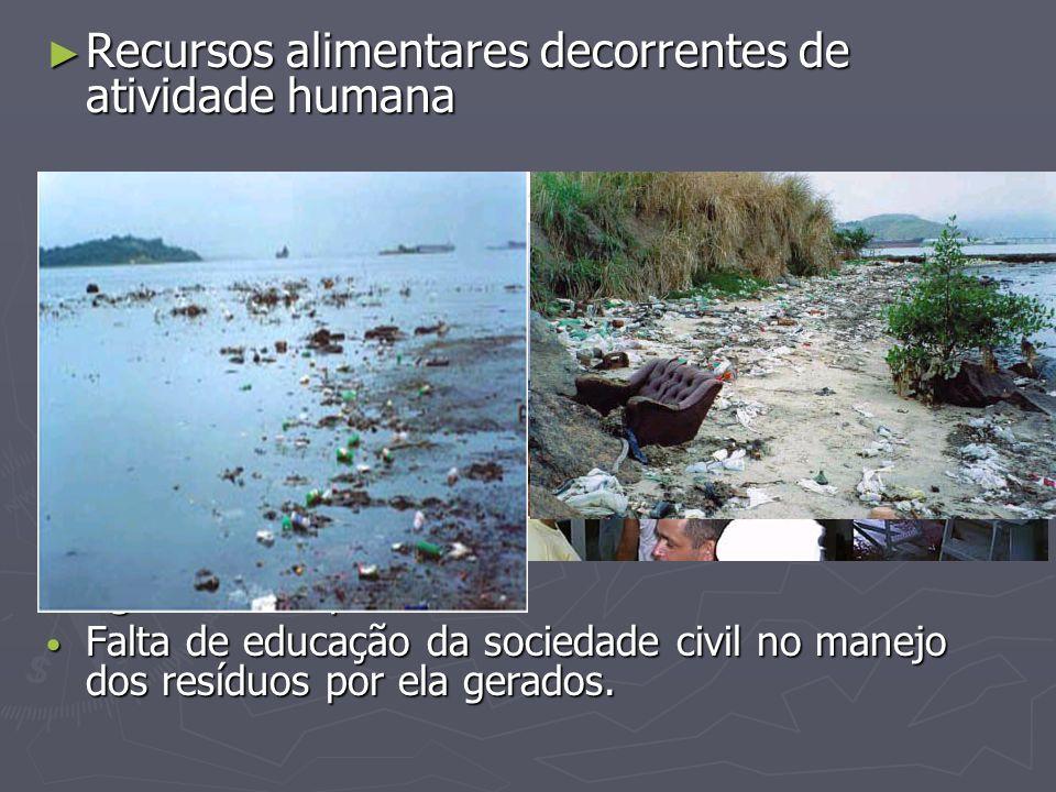 Recursos alimentares decorrentes de atividade humana Recursos alimentares decorrentes de atividade humana Aterros sanitários Aterros sanitários Lixões