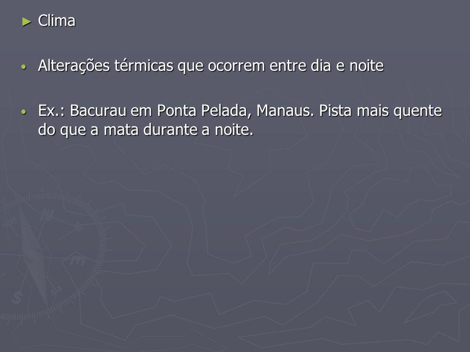 Clima Clima Alterações térmicas que ocorrem entre dia e noite Alterações térmicas que ocorrem entre dia e noite Ex.: Bacurau em Ponta Pelada, Manaus.