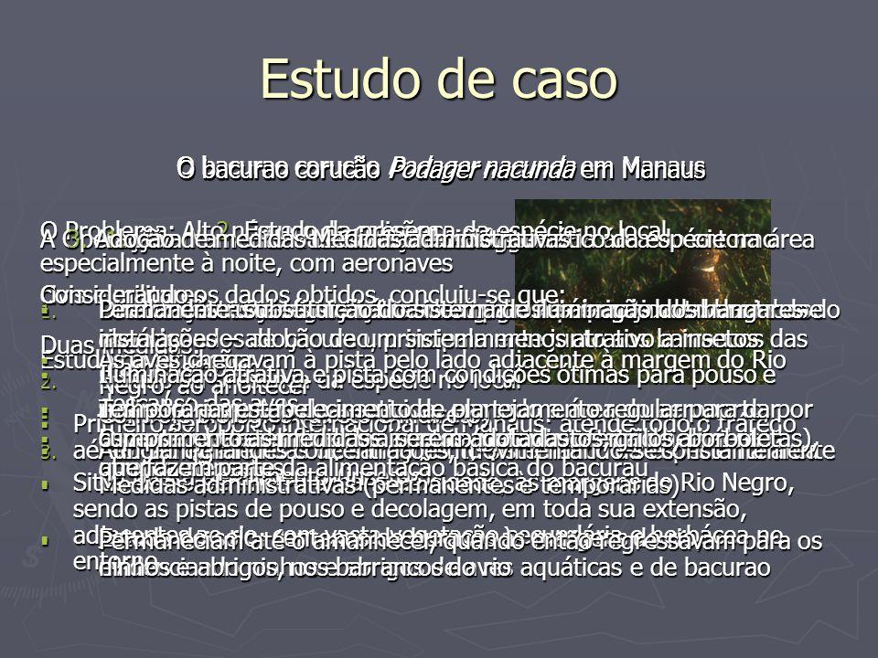 Estudo de caso O bacurao corucão Podager nacunda em Manaus O Problema: Alto número de colisões, especialmente à noite, com aeronaves civis e militares