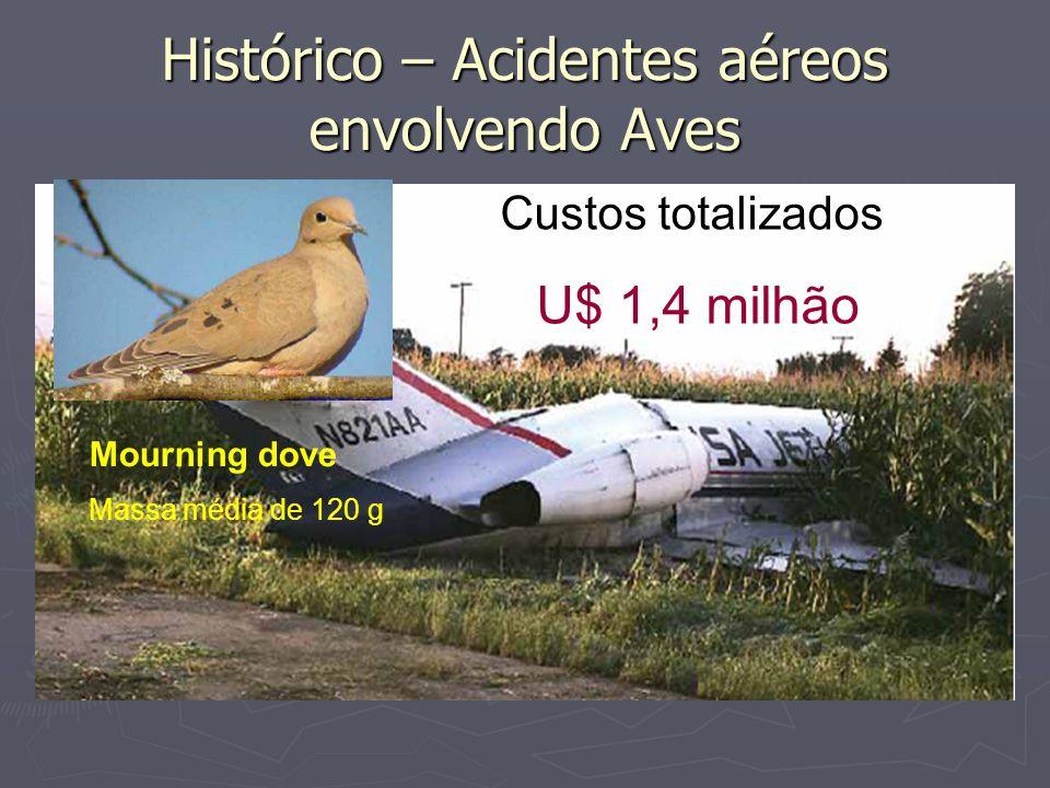 Histórico – Acidentes aéreos envolvendo Aves Mourning dove Massa média de 120 g Custos totalizados: U$ 1,4 milhão