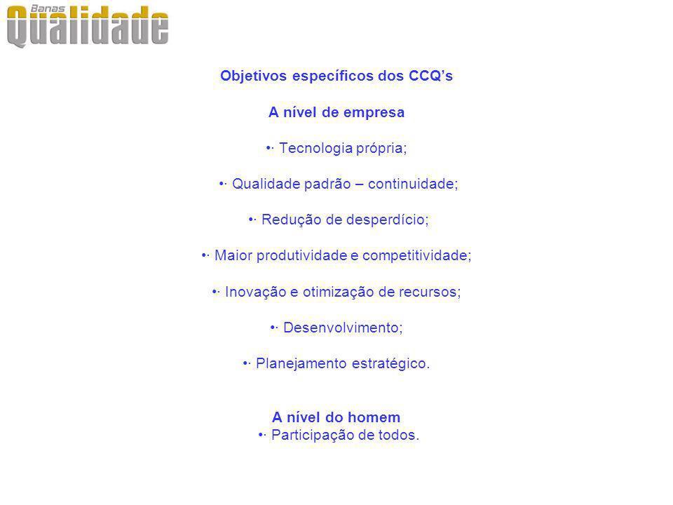 Objetivos específicos dos CCQs A nível de empresa· Tecnologia própria; · Qualidade padrão – continuidade; · Redução de desperdício;· Maior produtivida