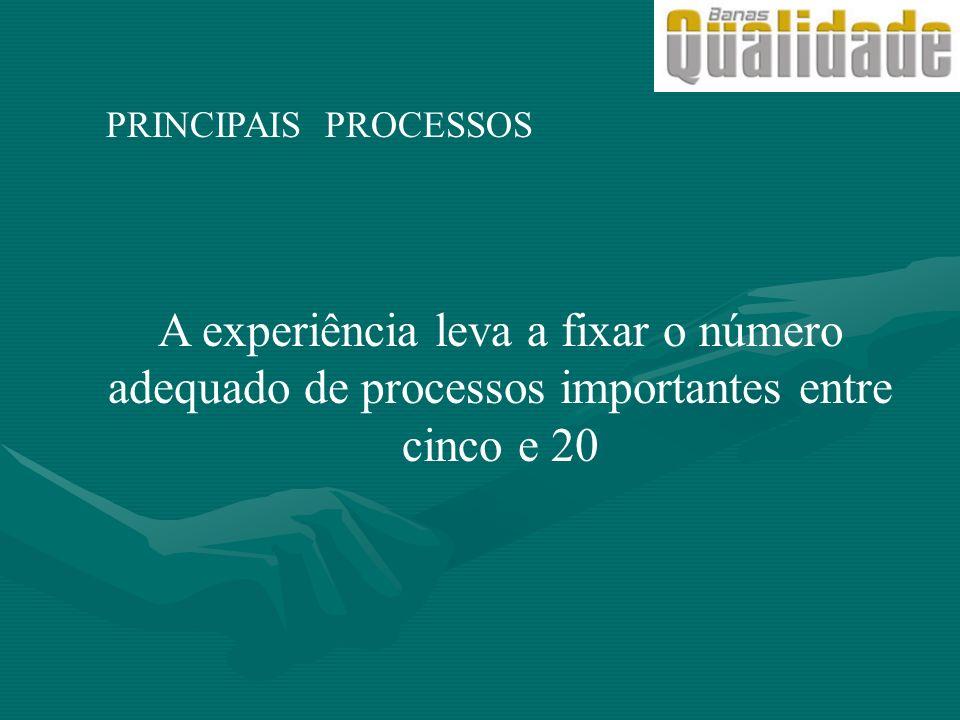 PRINCIPAIS PROCESSOS A experiência leva a fixar o número adequado de processos importantes entre cinco e 20