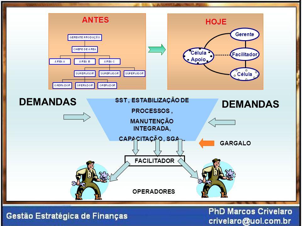 Gerente Facilitador Célula Apoio HOJEANTES DEMANDAS SST, ESTABILIZAÇÃO DE PROCESSOS, MANUTENÇÃO INTEGRADA, CAPACITAÇÃO, SGA...