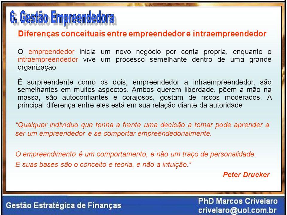 Diferenças conceituais entre empreendedor e intraempreendedor O empreendedor inicia um novo negócio por conta própria, enquanto o intraempreendedor vi