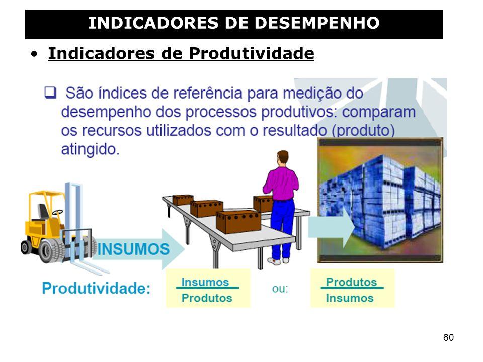 60 INDICADORES DE DESEMPENHO Indicadores de Produtividade
