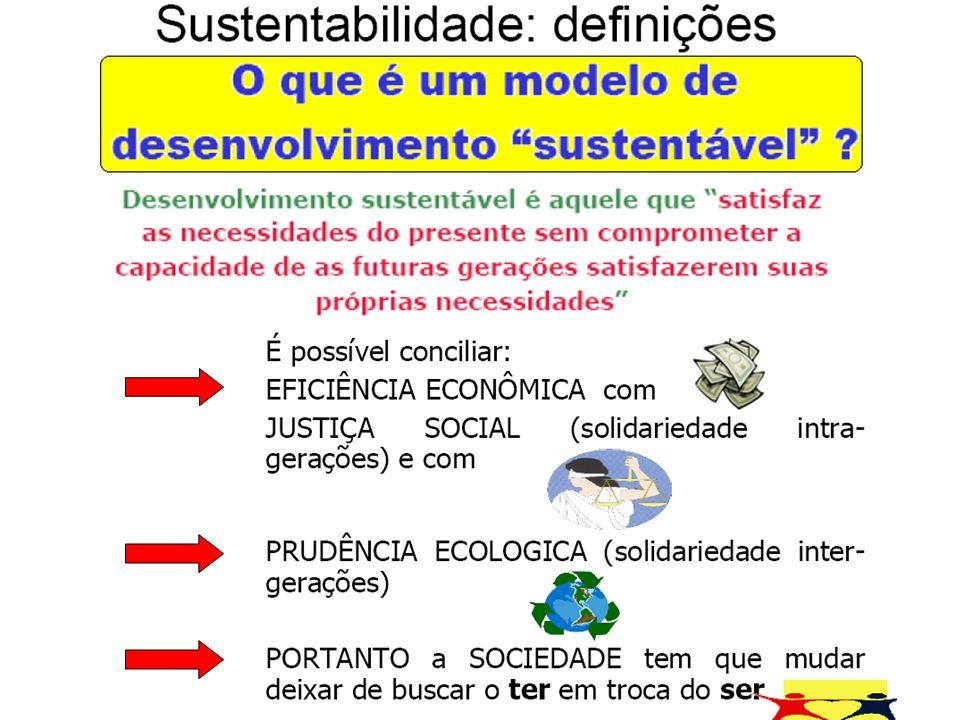 A sustentabilidade do negócio já é um tema freqüentemente vinculado ao próprio desenvolvimento sustentável que se sustenta sobre três pilares conhecidos por treli bottom line: desempenho econômico/financeiro, social e ambiental.