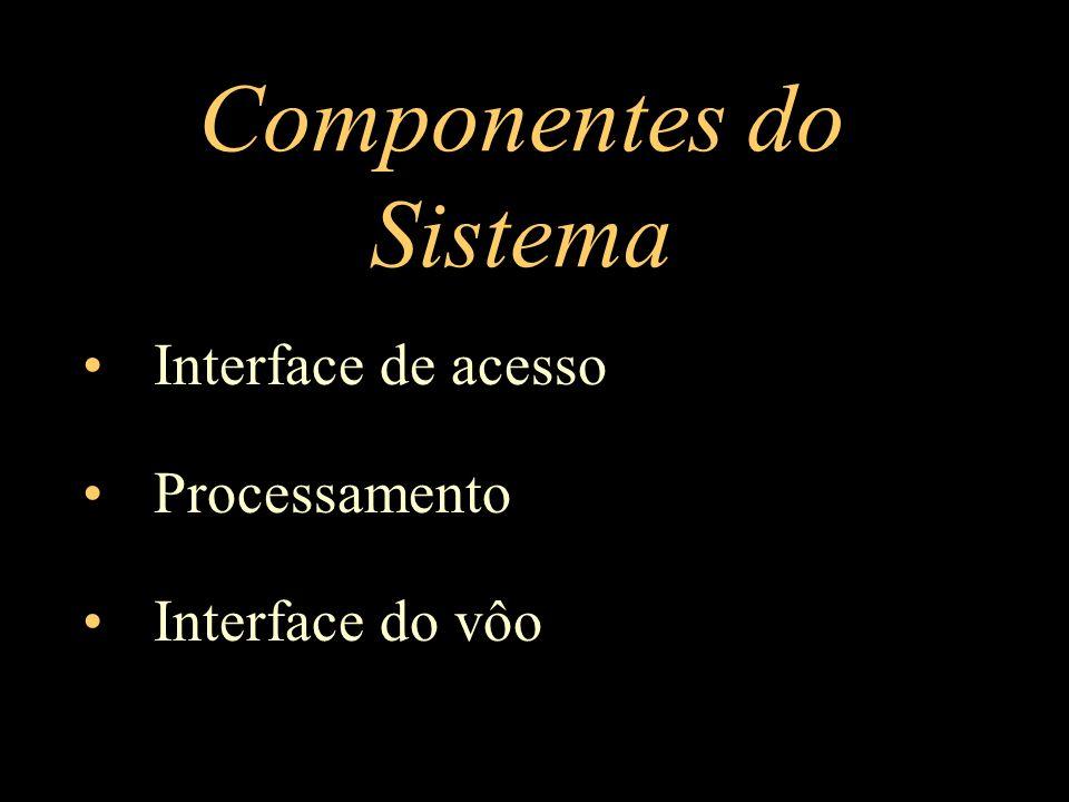 Componentes do Sistema Interface de acesso Processamento Interface do vôo
