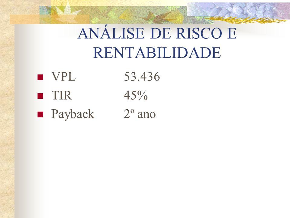 ANÁLISE DE RISCO E RENTABILIDADE VPL53.436 TIR45% Payback 2º ano