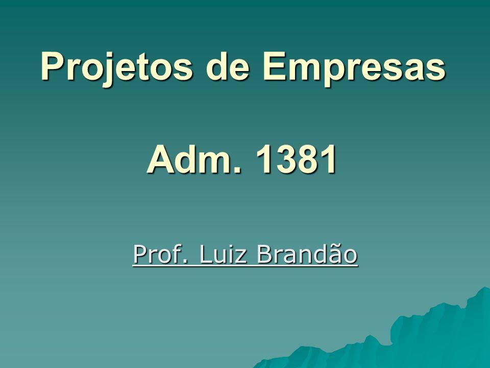 Projetos de Empresas Adm. 1381 Prof. Luiz Brandão