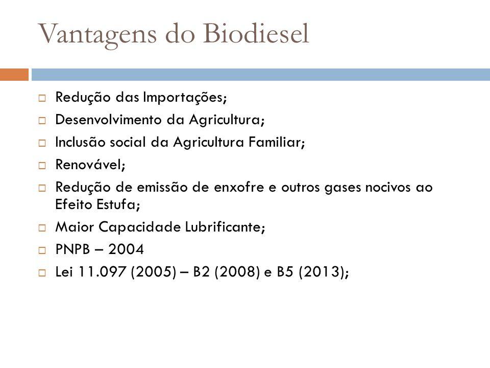 Vantagens do Biodiesel Redução das Importações; Desenvolvimento da Agricultura; Inclusão social da Agricultura Familiar; Renovável; Redução de emissão