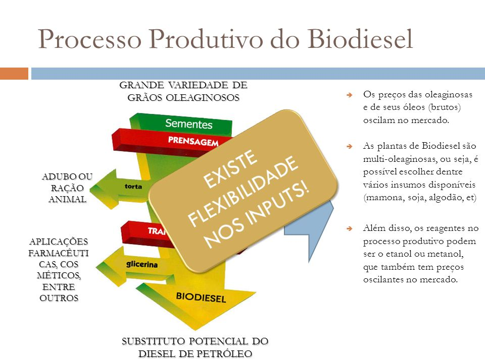 Processo Produtivo do Biodiesel GRANDE VARIEDADE DE GRÃOS OLEAGINOSOS ADUBO OU RAÇÃO ANIMAL APLICAÇÕES FARMACÊUTI CAS, COS MÉTICOS, ENTRE OUTROS SUBST