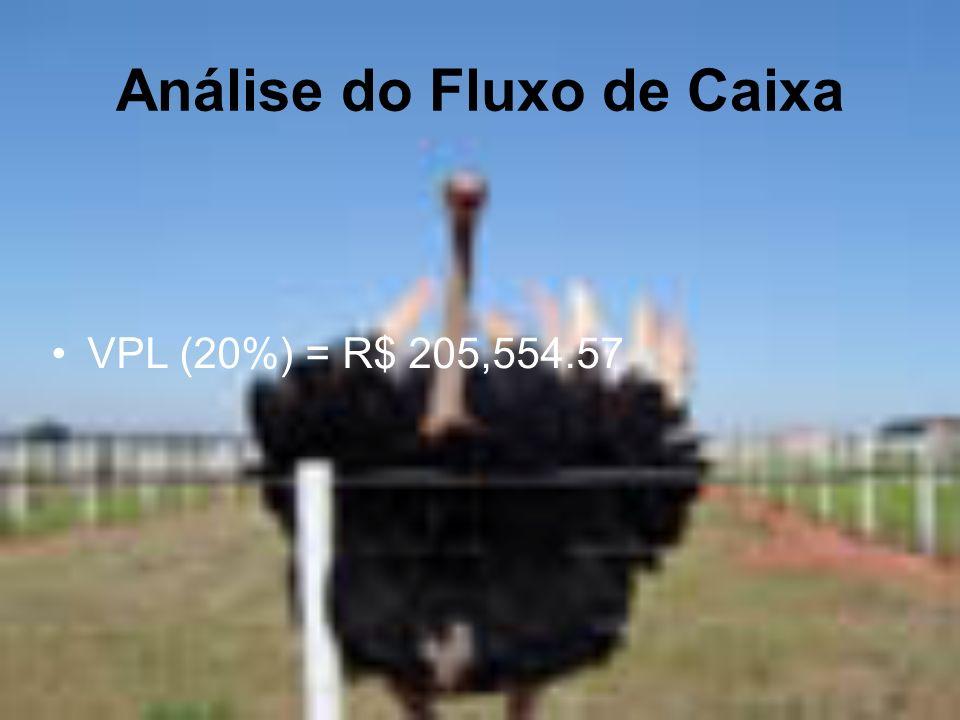 VPL (20%) = R$ 205,554.57 Análise do Fluxo de Caixa