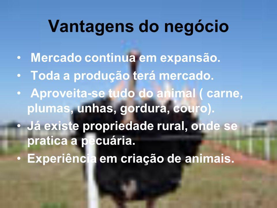 Vantagens do negócio Mercado continua em expansão. Toda a produção terá mercado. Aproveita-se tudo do animal ( carne, plumas, unhas, gordura, couro).