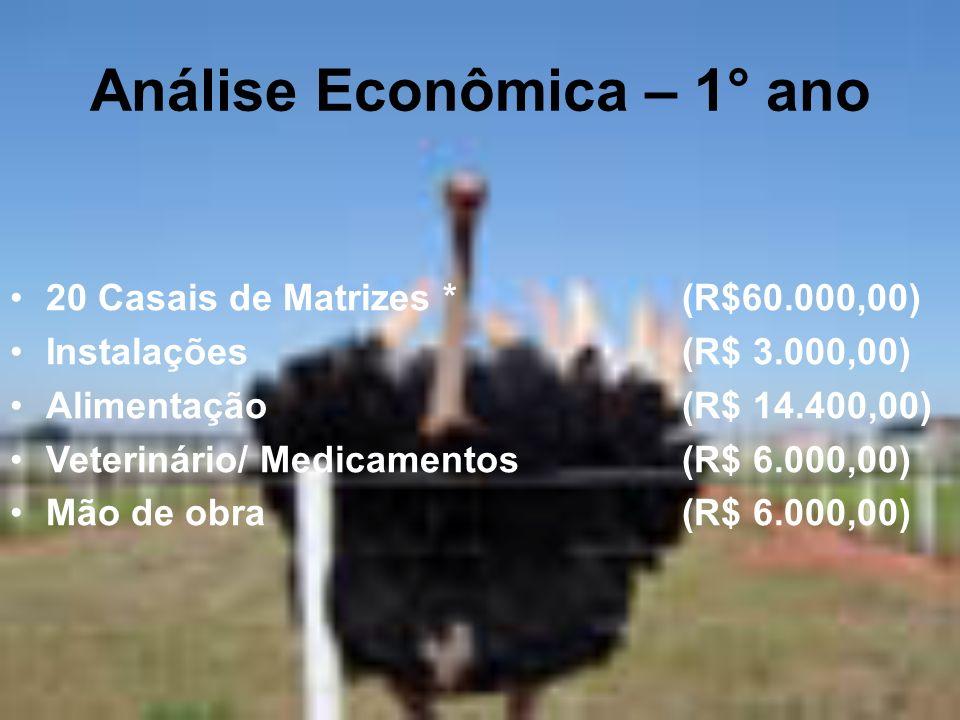 Análise Econômica – 1° ano 20 Casais de Matrizes *(R$60.000,00) Instalações(R$ 3.000,00) Alimentação(R$ 14.400,00) Veterinário/ Medicamentos(R$ 6.000,