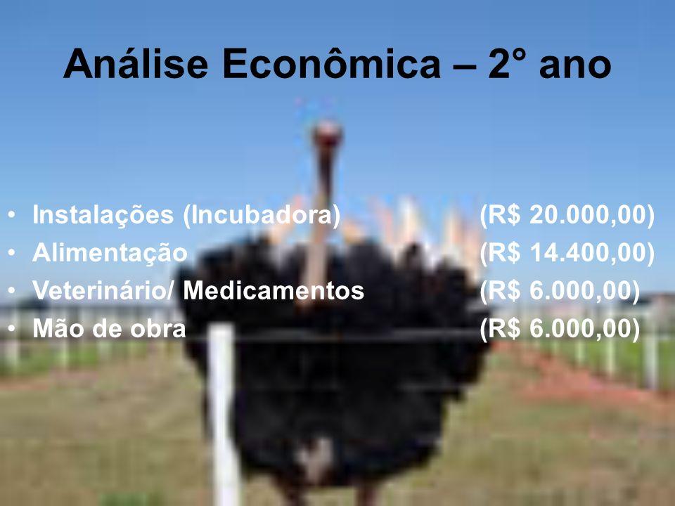 Análise Econômica – 2° ano Instalações (Incubadora) (R$ 20.000,00) Alimentação(R$ 14.400,00) Veterinário/ Medicamentos(R$ 6.000,00) Mão de obra(R$ 6.0