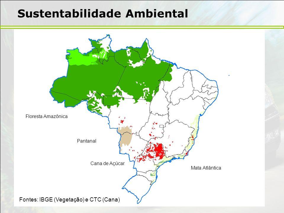 Sustentabilidade Ambiental Fontes: IBGE (Vegetação) e CTC (Cana) Floresta Amazônica Pantanal Cana de Açúcar Mata Atlântica