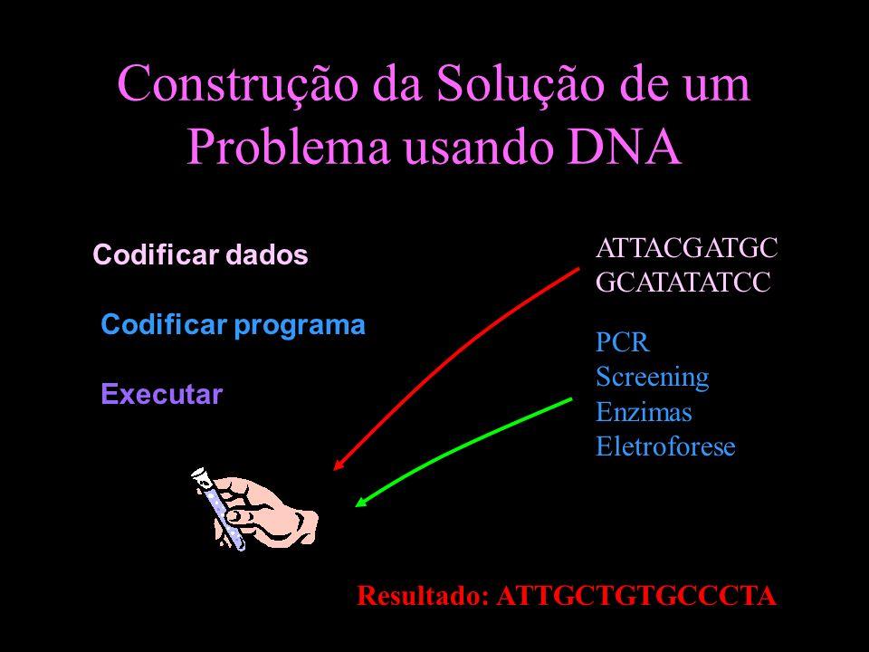 Construção da Solução de um Problema usando DNA Codificar dados Codificar programa Executar ATTACGATGC GCATATATCC PCR Screening Enzimas Eletroforese...