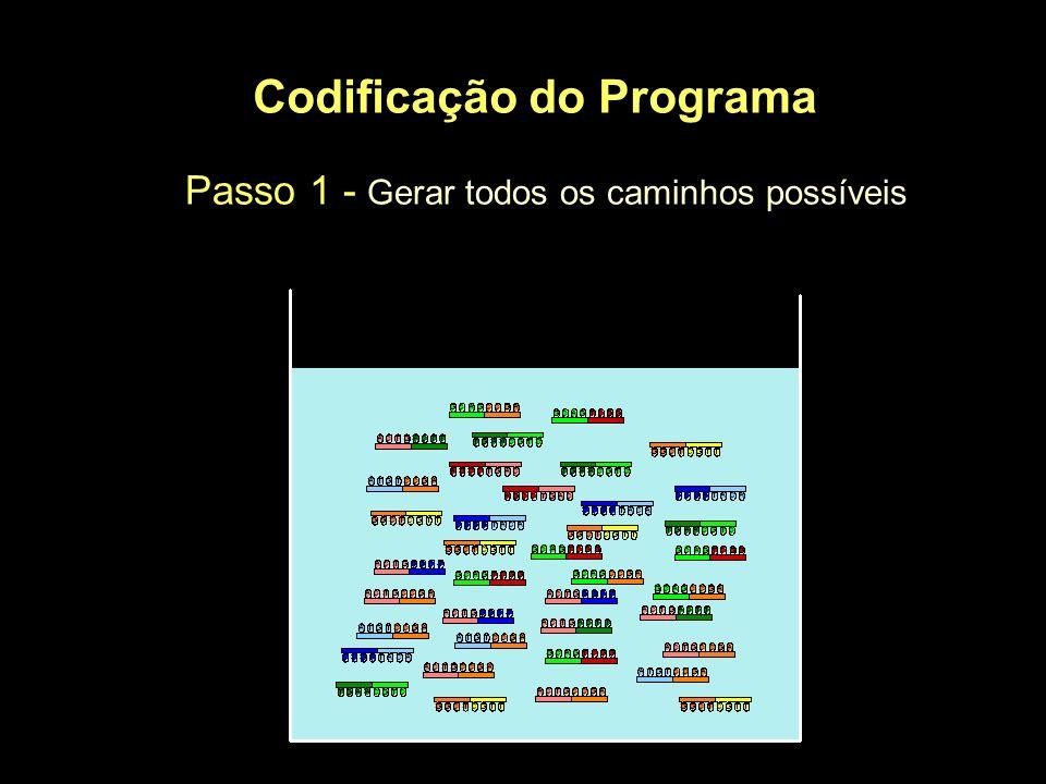 Codificação do Programa Passo 1 - Gerar todos os caminhos possíveis