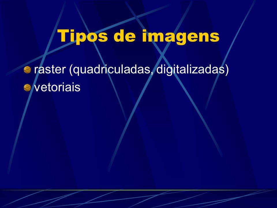 Imagens raster Mapas de bits (bitmaps) feitas de pontos individuais (pixels) grade de x pixels de largura por y pixels de altura dimensões fixas tamanho do arquivo aumenta com o tamanho e resolução da imagem screen art