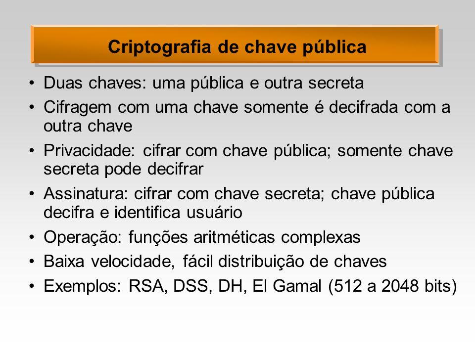 Criptografia de chave pública Duas chaves: uma pública e outra secreta Cifragem com uma chave somente é decifrada com a outra chave Privacidade: cifra