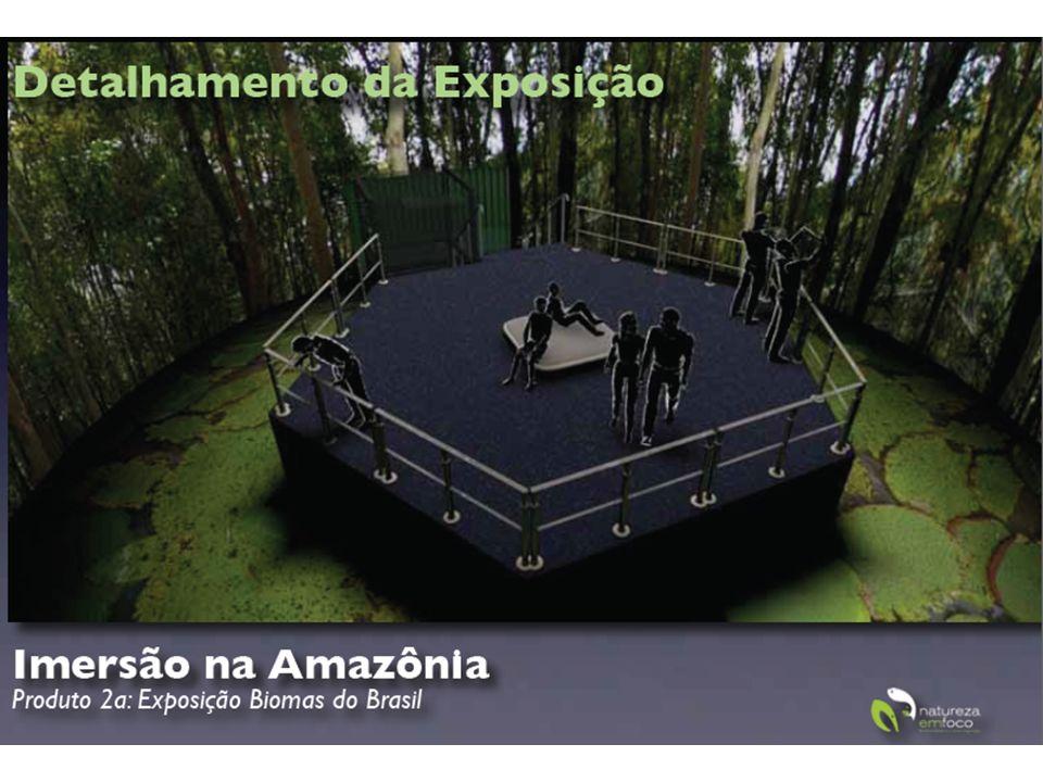 http://www.biomasdobrasil.com/ http://www.eravirtual.org/biomas/index.html