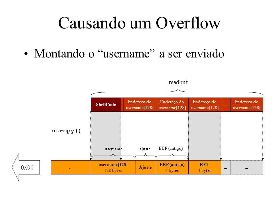 strcpy() Causando um Overflow Montando o username a ser enviado readbuf[256] 256 bytes readbuf... EBP (antigo) 4 bytes... 0x00 Ajuste usernameajuste E