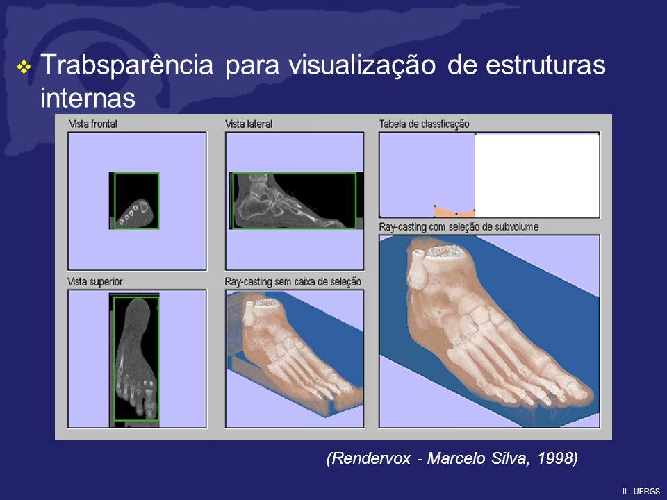 II - UFRGS Visualização híbrida com objetos geométricos (Rendervox - Marcelo Silva, 1998)