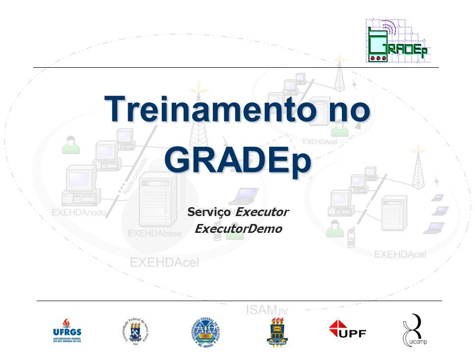 Slide 12 Rede Nacional de Ensino e Pesquisa Treinamento em Gradep - julho 2005 Serviço Executor ExecutorDemo exemplo de uma aplicação do serviço Executor no GRADEp local: /isam/isam-apps/executordemo/ arquivos: ExecutorDemo.java fonte da aplicação.