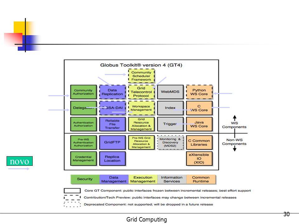 Grid Computing 30 novo