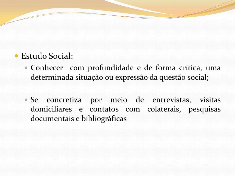 Estudo Social: Conhecer com profundidade e de forma crítica, uma determinada situação ou expressão da questão social; Se concretiza por meio de entrev