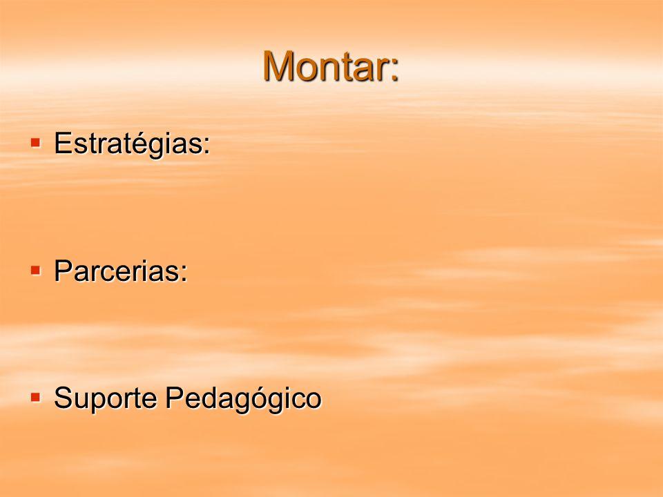 Montar: Estratégias: Estratégias: Parcerias: Parcerias: Suporte Pedagógico Suporte Pedagógico