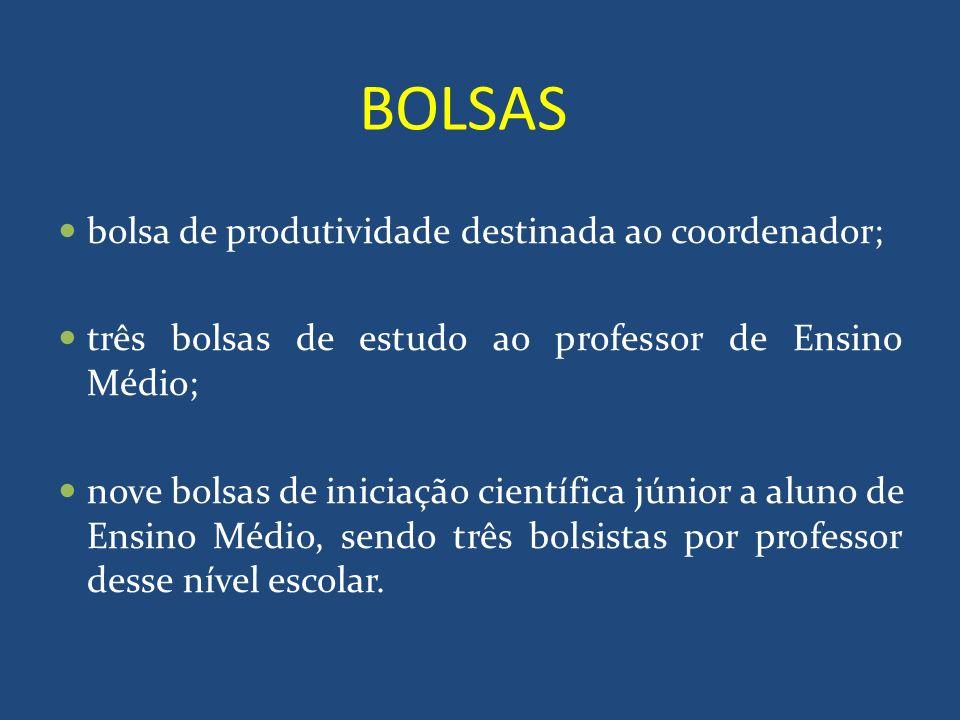 BOLSAS bolsa de produtividade destinada ao coordenador; três bolsas de estudo ao professor de Ensino Médio; nove bolsas de iniciação científica júnior