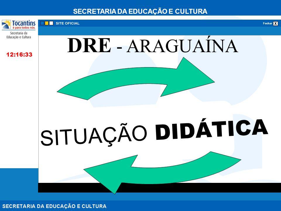SECRETARIA DA EDUCAÇÃO E CULTURA x Fechar SITUAÇÃO DIDÁTICA 12:16:33 DRE - ARAGUAÍNA