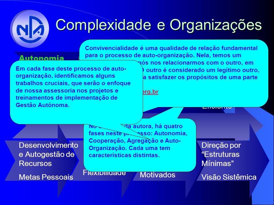 Complexidade e Organizações CooperaçãoAutonomiaAgregação Auto Organização Indivíduos Capazes de Aprender e Adaptar-se Interações Negociadas Variedade