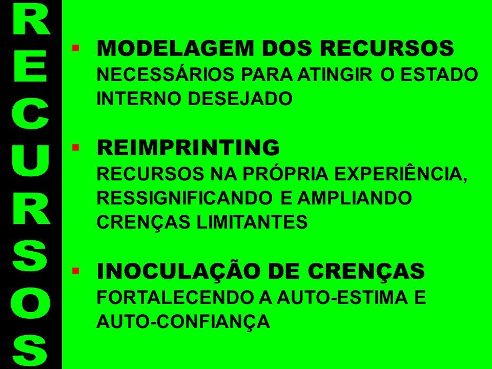 Recursos - 3 MODELAGEM DOS RECURSOS NECESSÁRIOS PARA ATINGIR O ESTADO INTERNO DESEJADO REIMPRINTING RECURSOS NA PRÓPRIA EXPERIÊNCIA, RESSIGNIFICANDO E