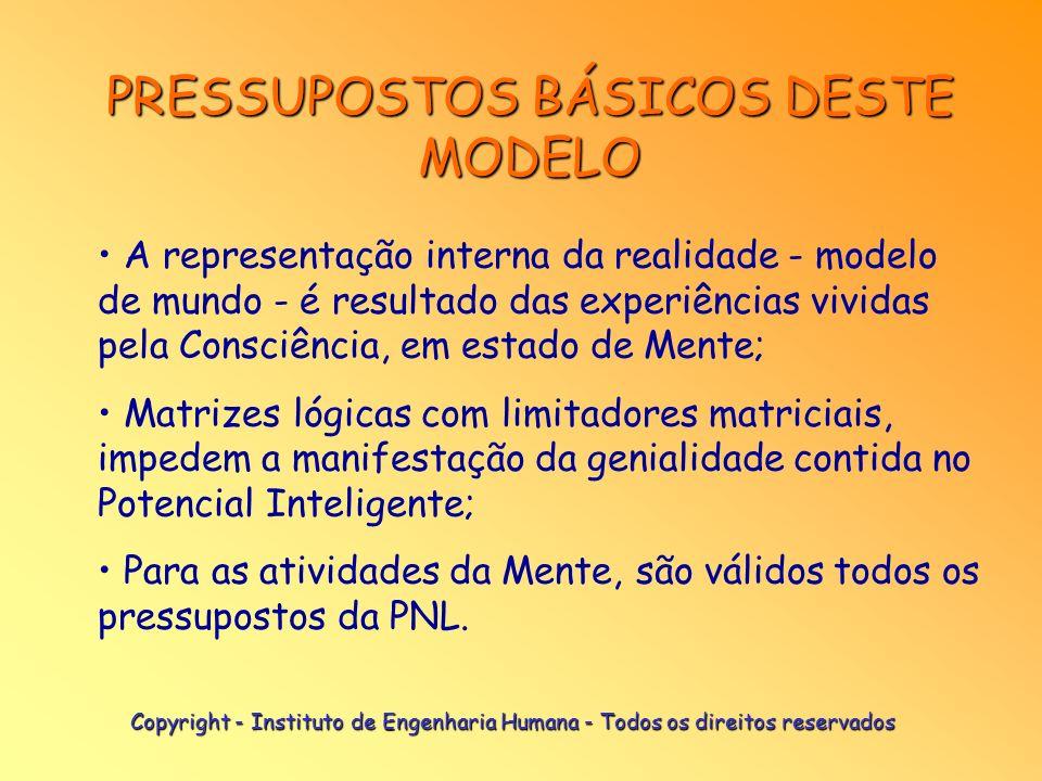 PRESSUPOSTOS BÁSICOS DESTE MODELO As matrizes lógicas são compostas por programas e meta-programas operacionais, organizados em estruturas sistêmicas;