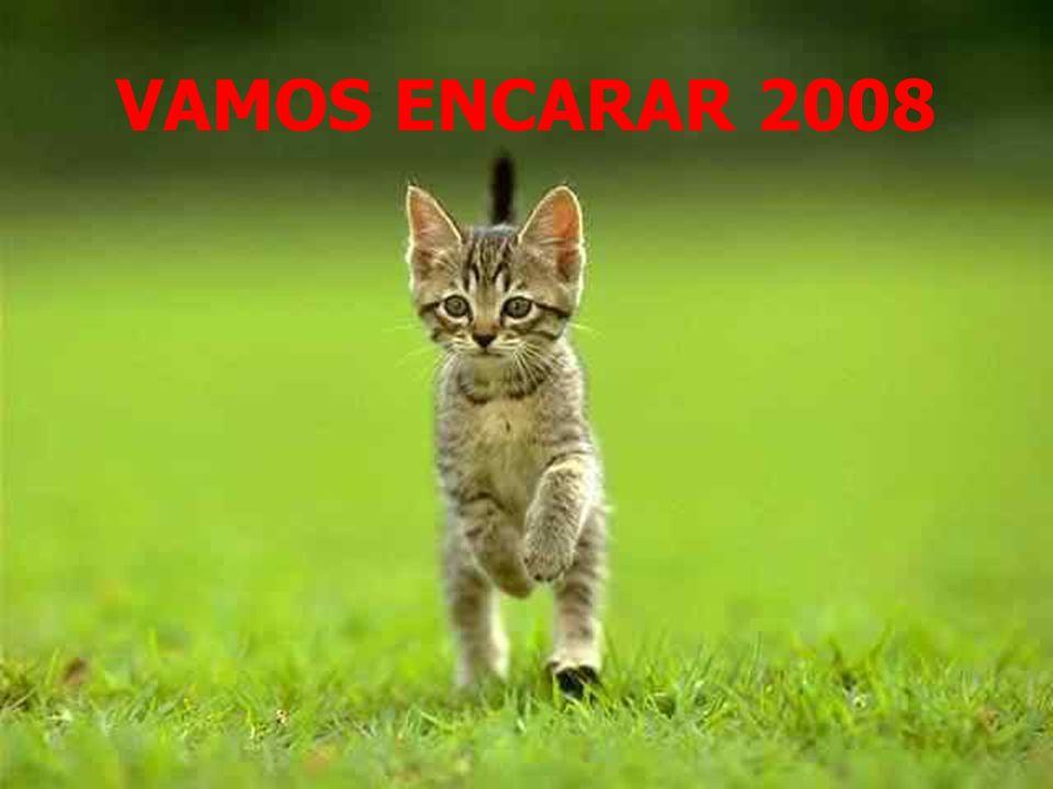 VAMOS ENCARAR 2008