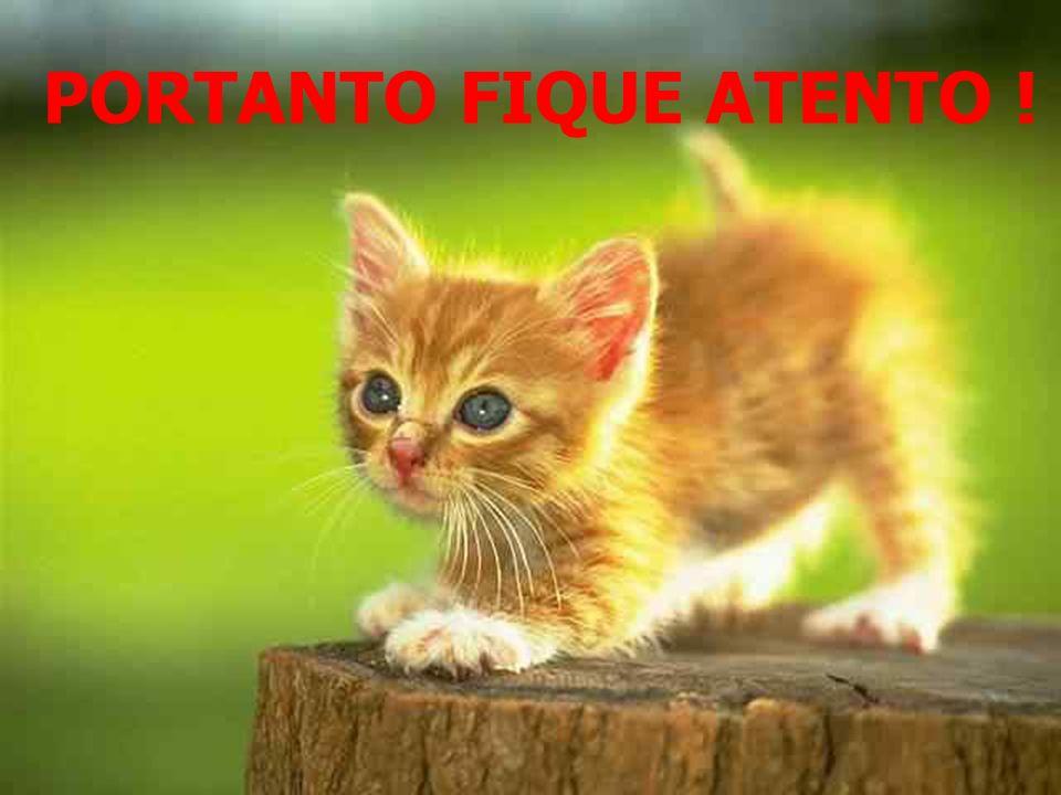 PORTANTO FIQUE ATENTO !