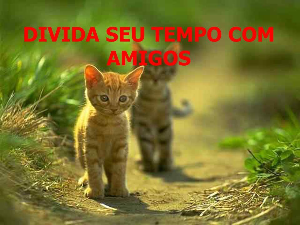 Mantenha a fé. E conte conosco sempre!! Com Carinho DRE-Araguaína