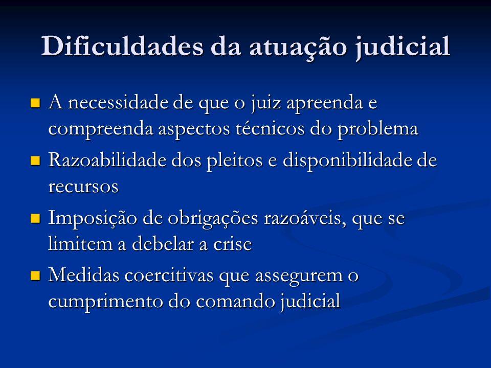 Dificuldades da atuação judicial A necessidade de que o juiz apreenda e compreenda aspectos técnicos do problema A necessidade de que o juiz apreenda