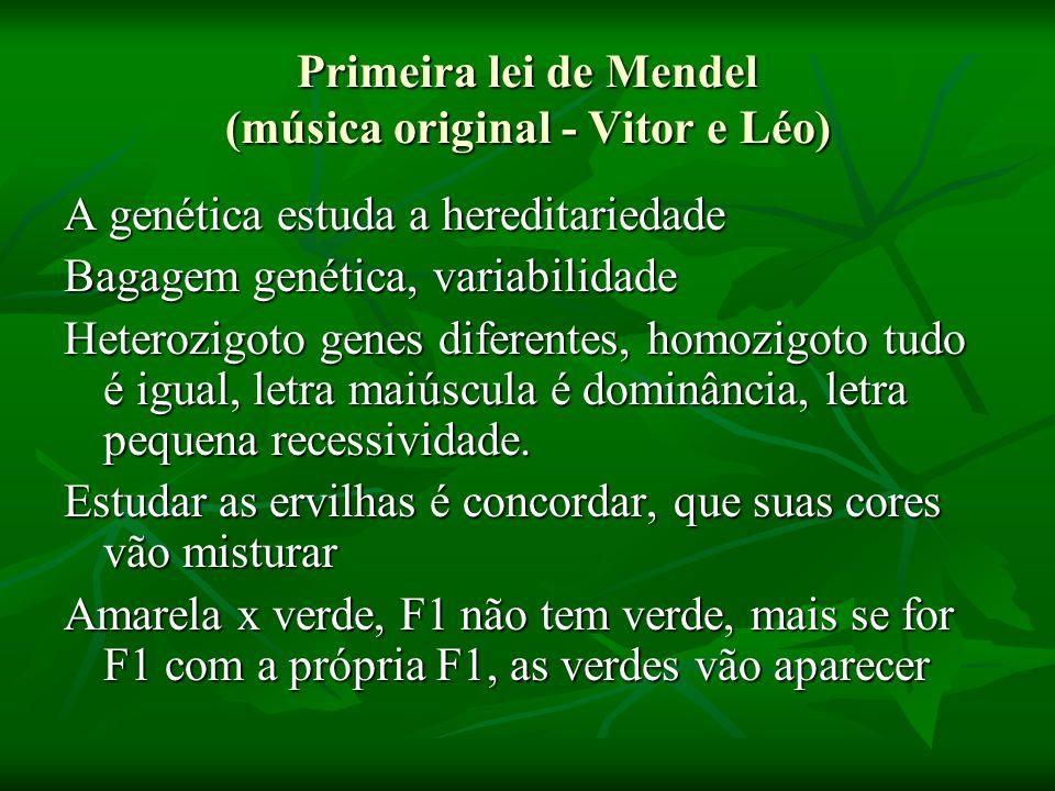 Primeira lei de Mendel (música original - Vitor e Léo) A genética estuda a hereditariedade Bagagem genética, variabilidade Heterozigoto genes diferent