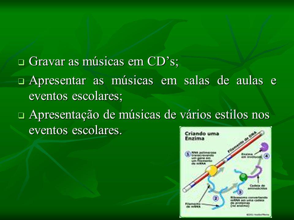 Gravar as músicas em CDs; Gravar as músicas em CDs; Apresentar as músicas em salas de aulas e eventos escolares; Apresentar as músicas em salas de aul