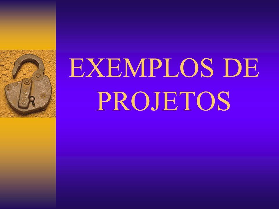 EXEMPLOS DE PROJETOS