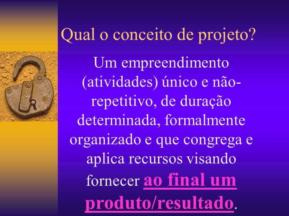 Campos de conhecimento necessários para a GP Conhecimentos sobre GP Conhecimentos sobre adm.