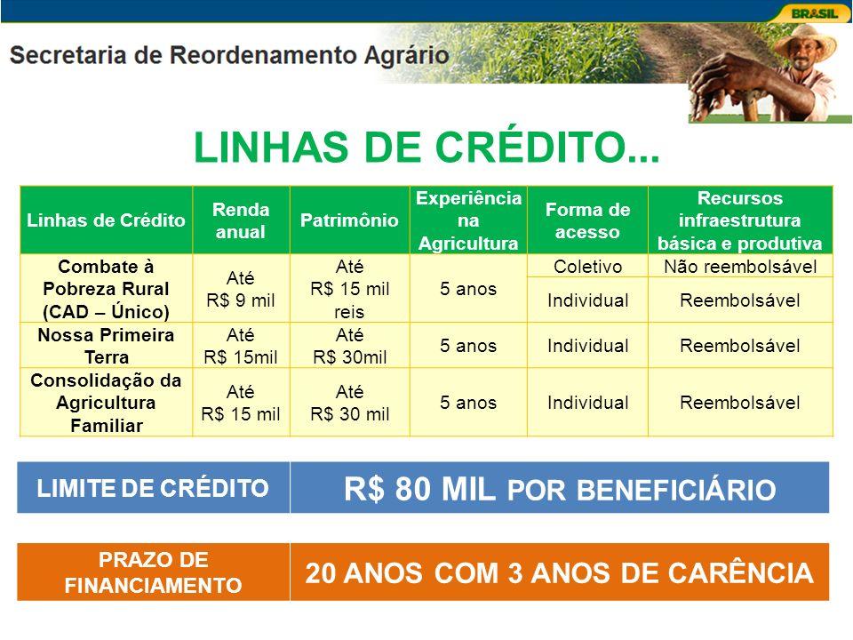LINHAS DE CRÉDITO... Linhas de Crédito Renda anual Patrimônio Experiência na Agricultura Forma de acesso Recursos infraestrutura básica e produtiva Co